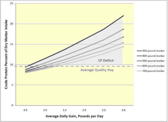 Protein in Beef Cattle Diets