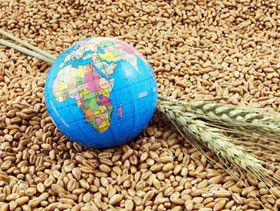 FAO Food Price Index Rises on Higher Dairy Prices